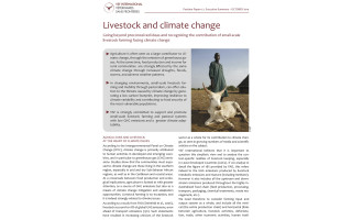 Livestock and climate change. Going beyond preconceived ideas and recognizing the contribution of small-scale livestock farming facing climate change