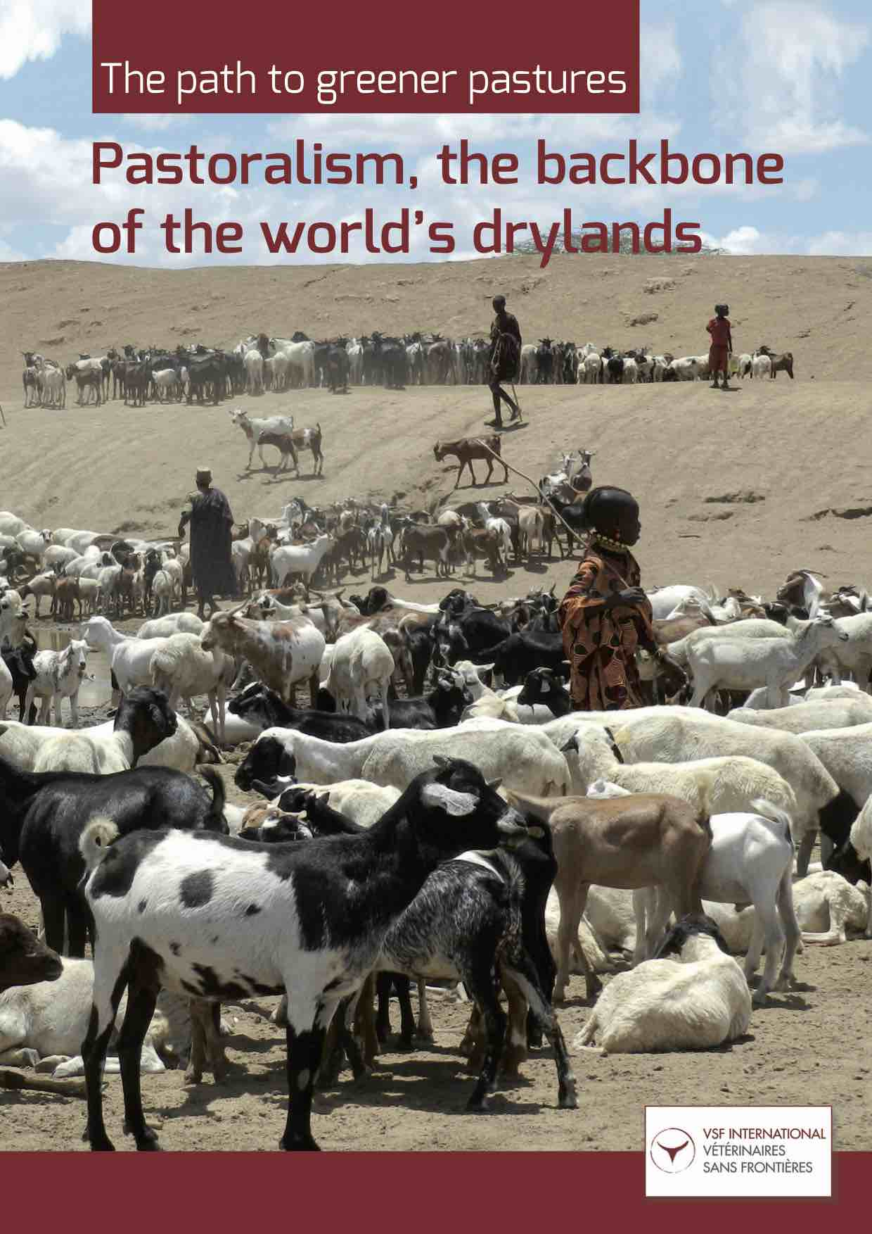 The Path To Greener Pastures Pastoralism Backbone Of Worlds Drylands