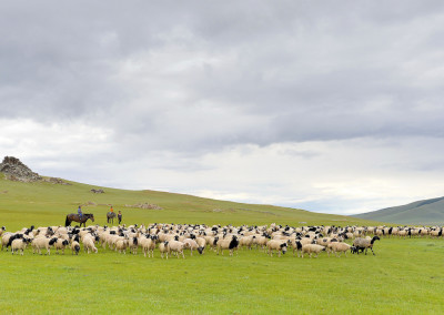 Mongolia: Revitalizing pastoralists traditional and collective rangeland-management practices