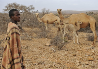 Ethiopia: Increase understanding and awareness of pastoralist systems