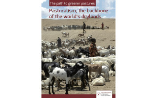 The path to greener pastures. Pastoralism, the backbone of the world's drylands