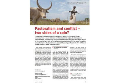 Pastoralism and conflict – two sides of a coin?