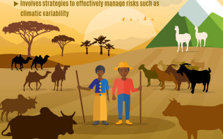 Pastoralism towards sustainable development