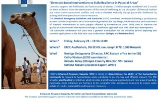 Livestock-based Interventions to Build Resilience in Pastoral Areas. Conference co-organized by VSF International, LEGS and ECHO