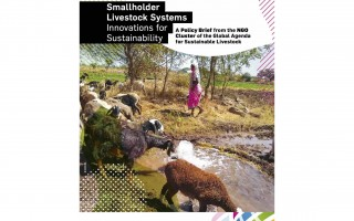 Smallholder Livestock Systems – Innovations for Sustainability