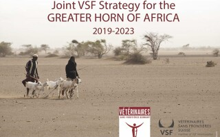 Joint VSF Strategy for the Greater Horn of Africa 2019-2023