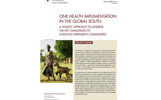 One Health implementation in the Global South: a holistic approach to address the key challenges of livestock-dependent communities
