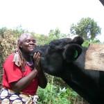 Santé animale, bien-être animale, One Health