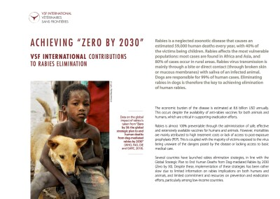 """Achieving """"Zero By 2030"""". VSF International contributions to rabies elimination"""